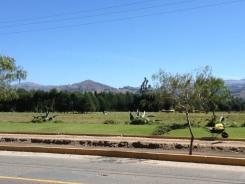 Atahualpa Cacti and Mountains