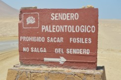 Fossil Sign