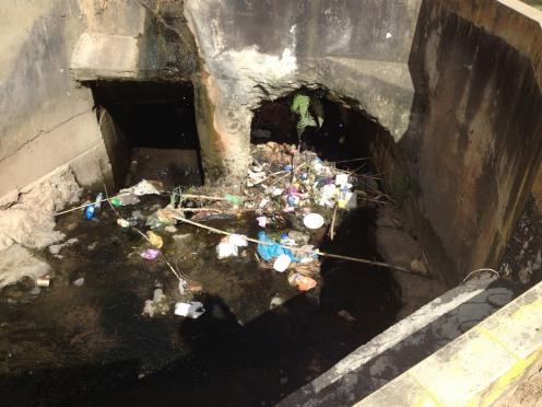 Trash in River