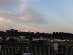Twilight at the Track