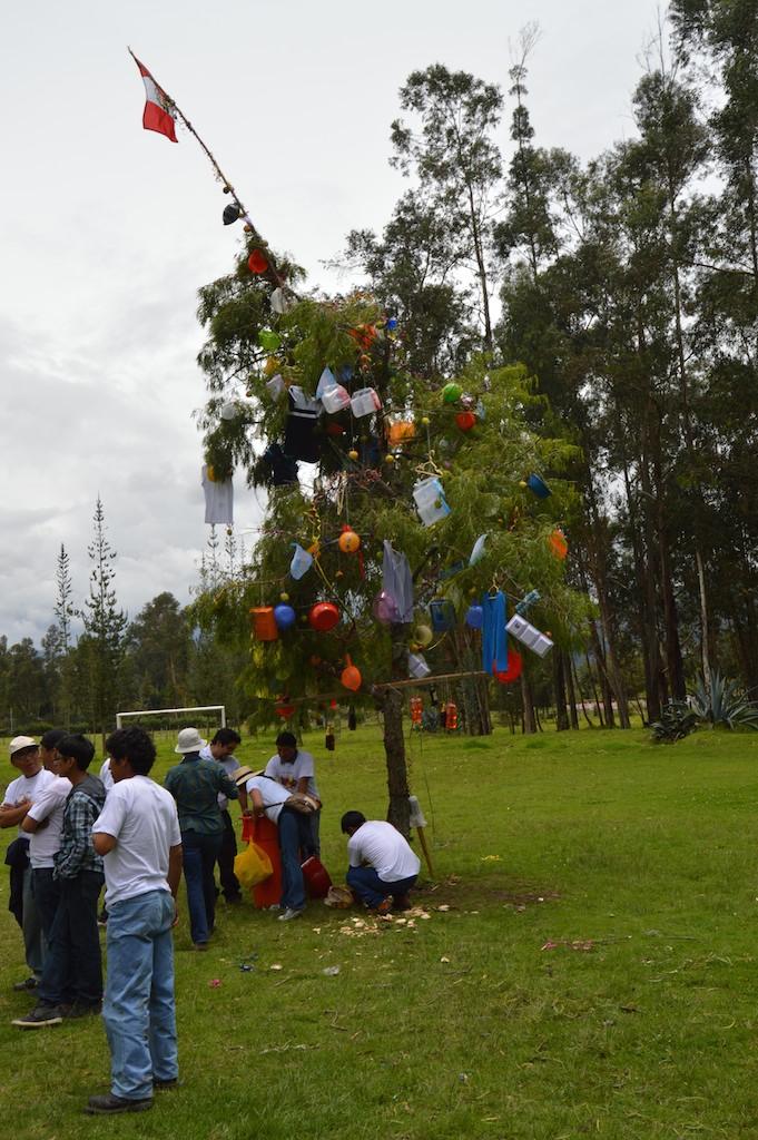 Unsha Tree