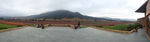 Montes View