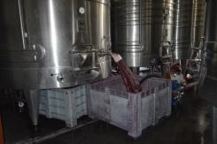 Wine Flowing