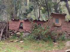 Cool House with Incan Windows