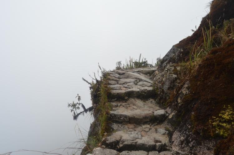 Macchu Picchu 9184