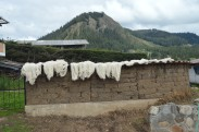 Wool drying