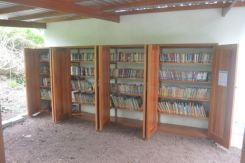 Beautiful, Organized Library!