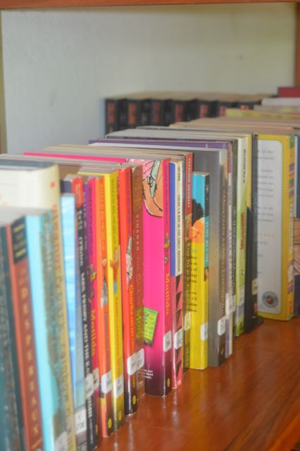 Gorgeous, New, Donated Books!