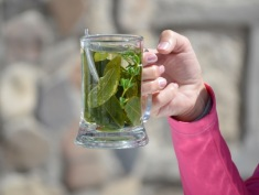 Coca and Muña Tea