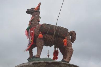 Trekking Llama