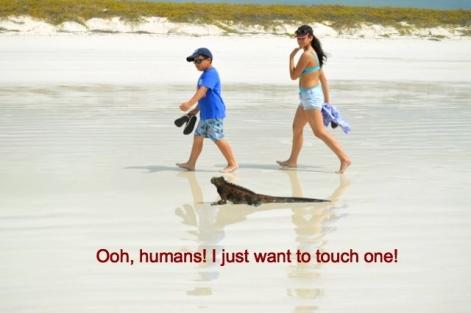 iguanahumans-1_fotor