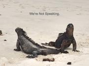 iguananotspeaking-1_fotor