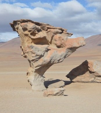 Arbol de Piedra (Stone Tree)